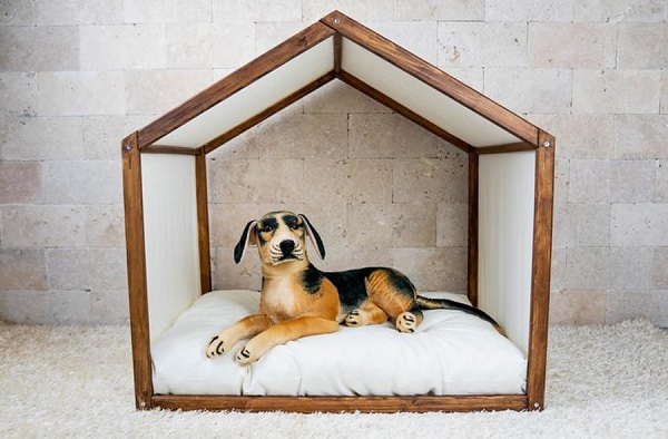 Indoor Dog House With Cardboards.